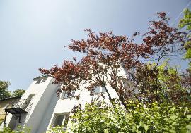 Достойные апартаменты с террасой у парка, 18-й район (Waehring) -
