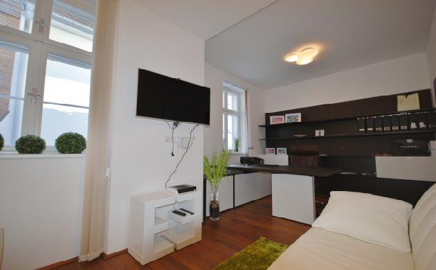 Современный эксклюзивный дуплекс в Вене на продажу, 19-й район (Doebling)