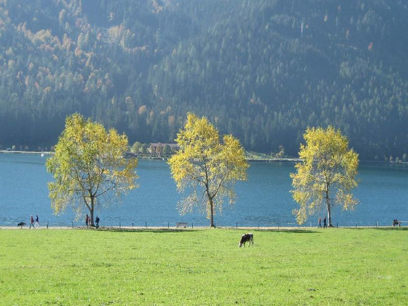 Hotel in Austria, Achensee - for sell