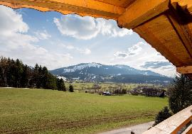 Real estate in Austria - Sunny luxurious apartments in Ellmau For Sale - Ellmau - Tirol