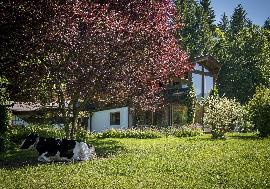 Country house in a sunny location of Going am Wilder Kaiser, Going am Wilden Kaiser - Austria - Tirol