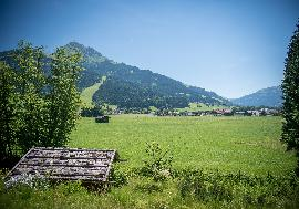 Austria - Tirol | Idyllic plot with rustic farmhouse in Oberndorf for sale